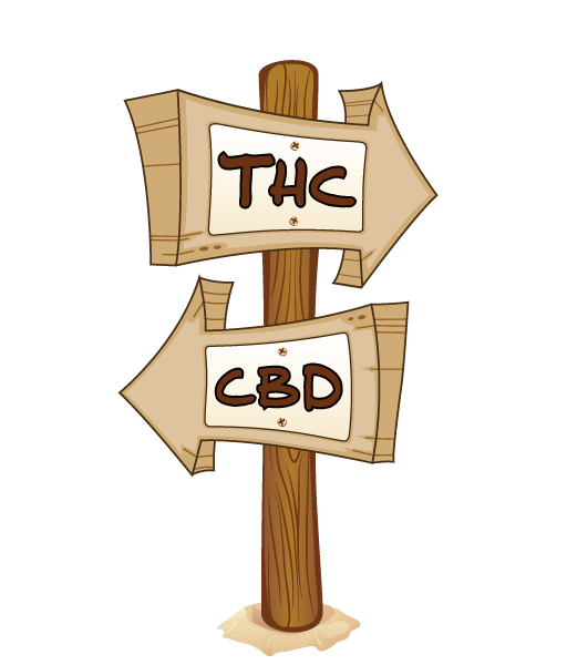 hippie chicks cbd vs thc sign post